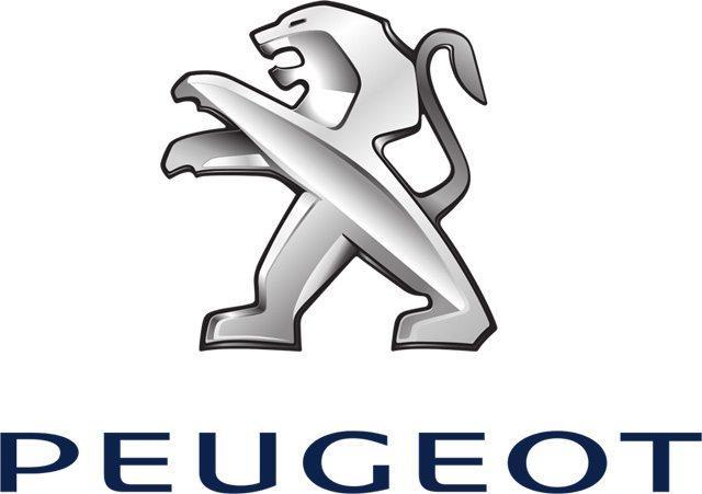 Peugeot Auto Gearbox Repair